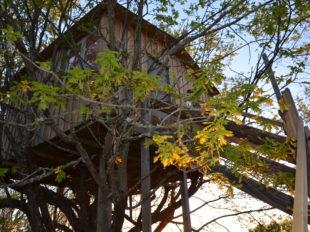 La Ferme de la Rougerie – Maison dans l'arbre à CONFLANS-SUR-LOING - 4  © RICARDOU