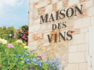 La Maison des Vins de Bourgueil à BOURGUEIL - 4  © S. Lira