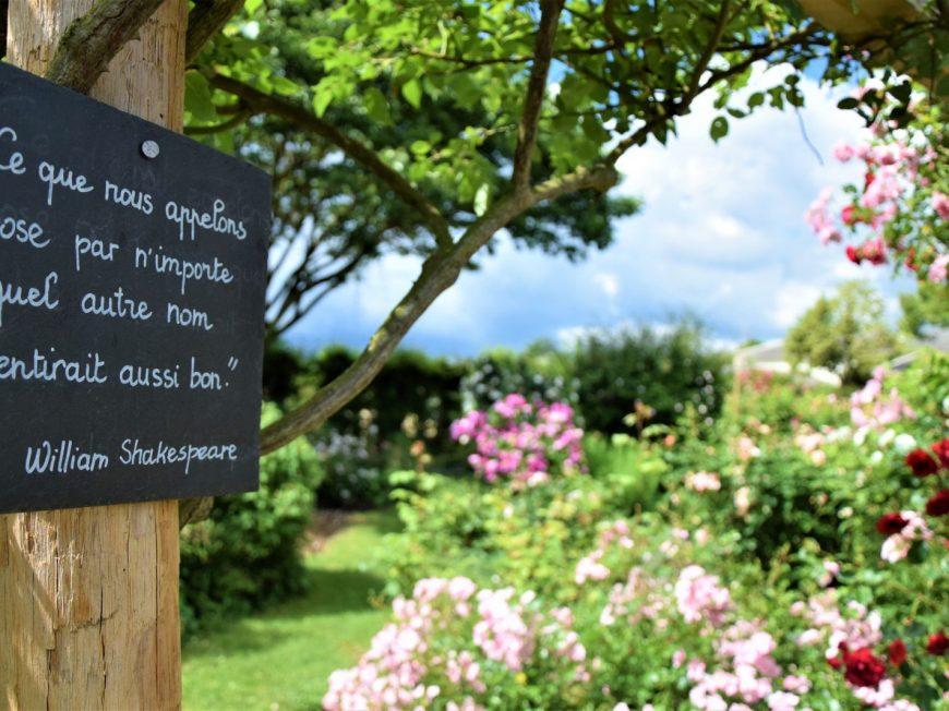 Visite commentée de la Roseraie de Morailles à PITHIVIERS-LE-VIEIL © otgp