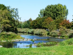 De l'arbre à l'eau à PAUCOURT - 8  © ADRT du Loiret