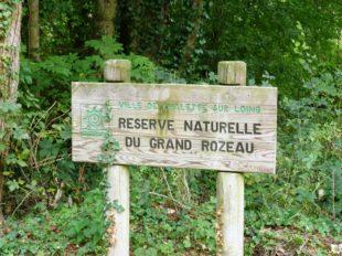 Sentier «Le Grand Rozeau» à CHALETTE-SUR-LOING - 7  © Ville de Chalette-sur-Loing