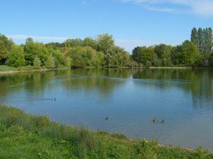 Promenade autour du lac à CHALETTE-SUR-LOING - 5  © ADRT du Loiret