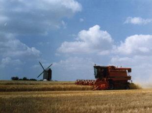 Moulin à vent «Fernand Barbier» à LEVESVILLE-LA-CHENARD - 4  © Moulin à vent