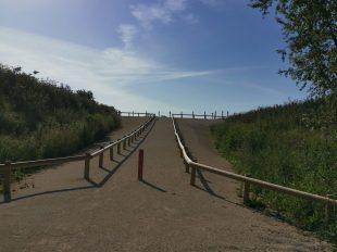 Sentier de découverte des carrières de Prasville à PRASVILLE - 3  © mtcb