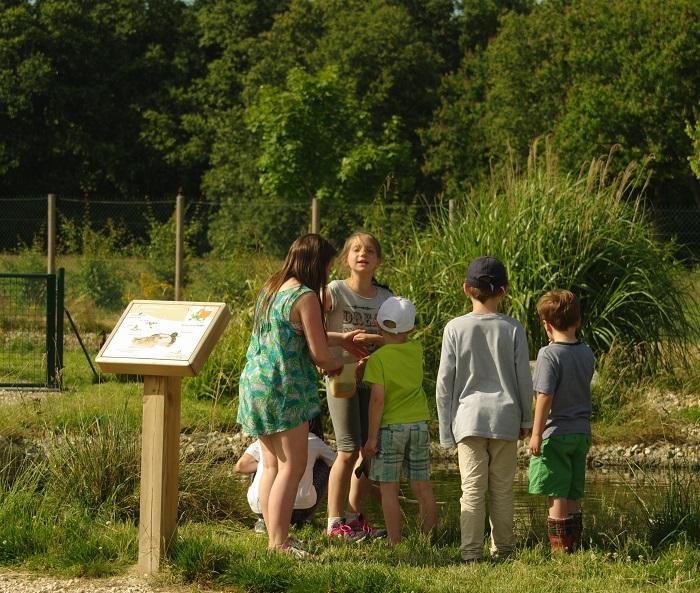 Instants Nature – Parc pédagogique «de plumes et d'eau à Montrieux-en-Sologne à MONTRIEUX-EN-SOLOGNE © FDC41