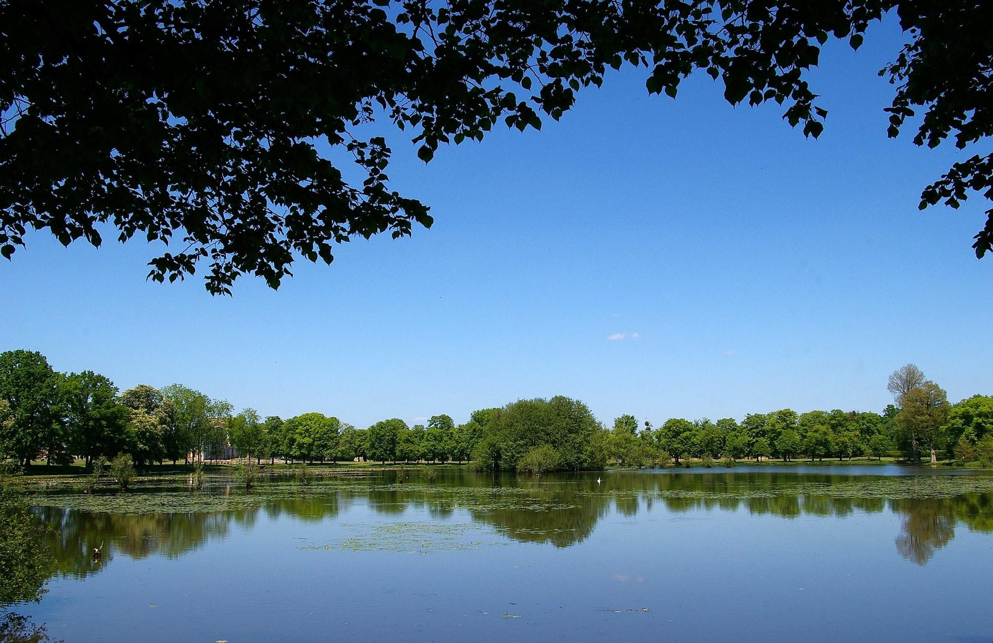 Pêche dans le Parc du château à LA FERTE-VIDAME - 3  © Gaël RENAUDIN