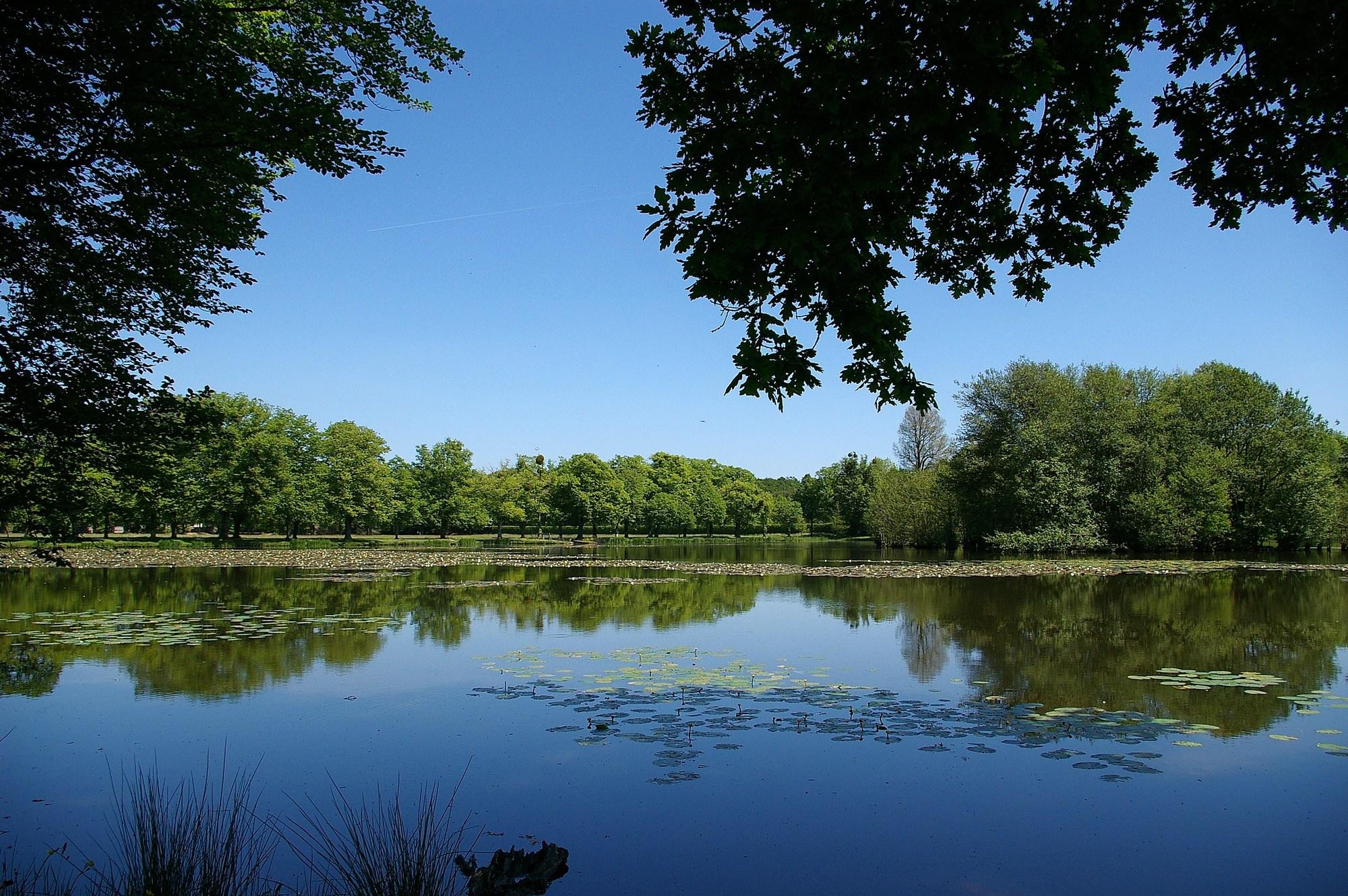 Pêche dans le Parc du château à LA FERTE-VIDAME - 4  © Gaël RENAUDIN