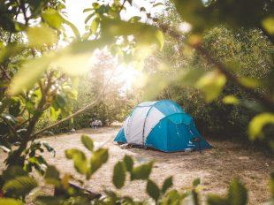 Camping Nature Ferme Pédagogique de Prunay à VALLOIRE-SUR-CISSE - 15  © camping_nature_ferme_pedagogiquedeprunay