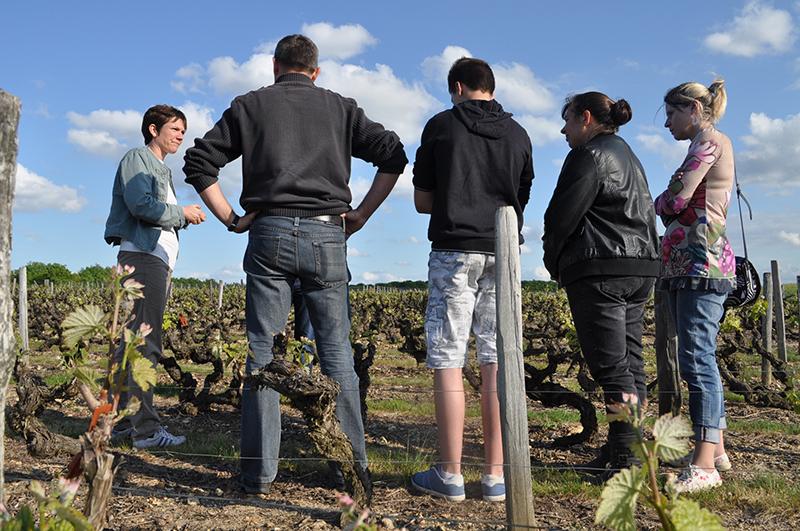 Rendez-Vous dans les vignes à CHANCAY © Droits réservés