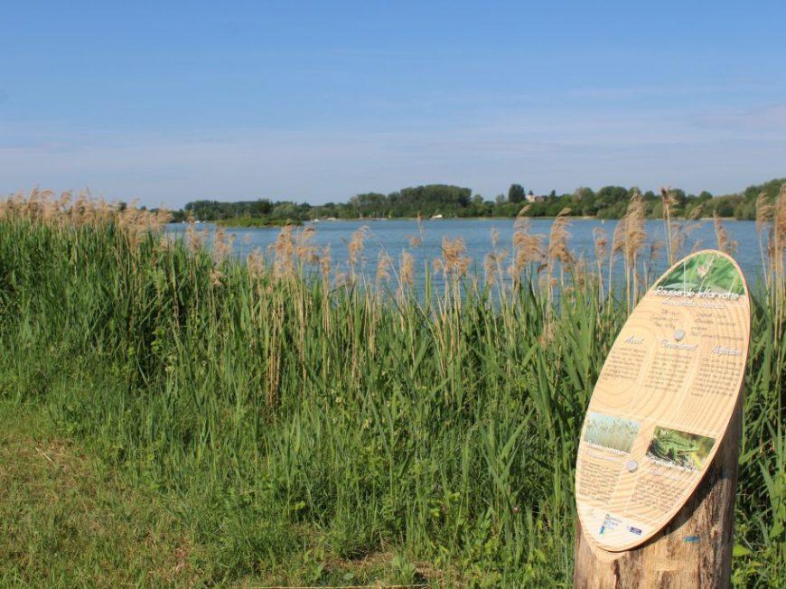 Parcours Ornithologique à CEPOY © Mairie de Cepoy
