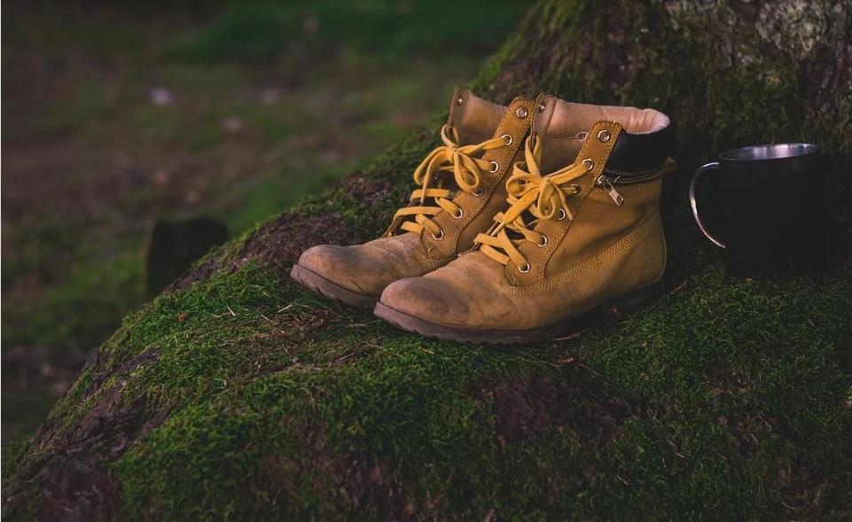 Randonnée Les collines du Perche à AUTHON-DU-PERCHE © pixabay