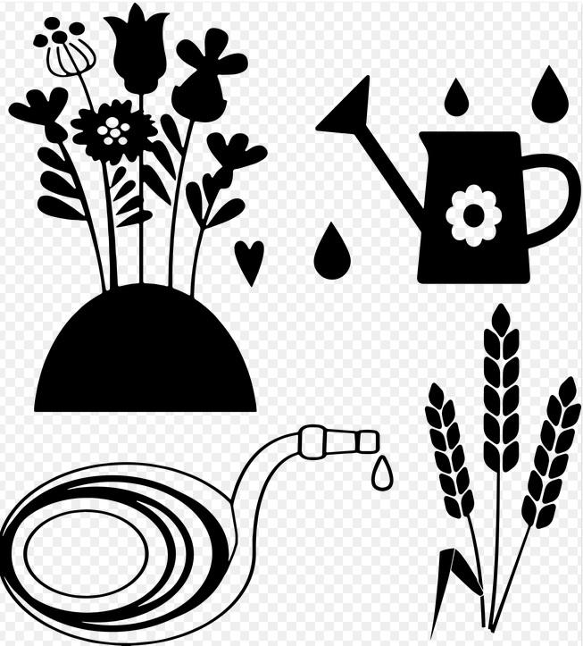 Annulation-Troc plantes troc graines à NOGENT-LE-ROTROU © pixabay