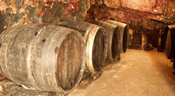 cave bruneau-dupuy – cave – © sylvain bruneau