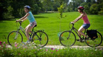 Location de vélos – Orgères-en-Beauce