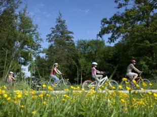 Maison du Tourisme Cœur de Beauce «Point de location vélos» à ORGERES-EN-BEAUCE - 3  © Patrick Forget - www.sagaphoto.com