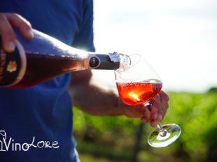 Vinoloire Wine-tours à VOUVRAY - 21  © Vincent Delaby
