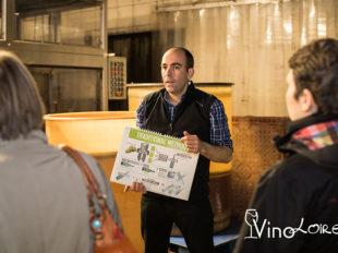 Vinoloire Wine-tours à VOUVRAY - 17  © Vincent Delaby