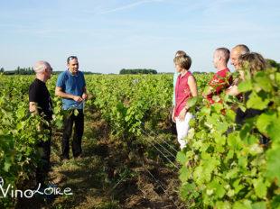 Vinoloire Wine-tours à VOUVRAY - 12  © Vincent Delaby