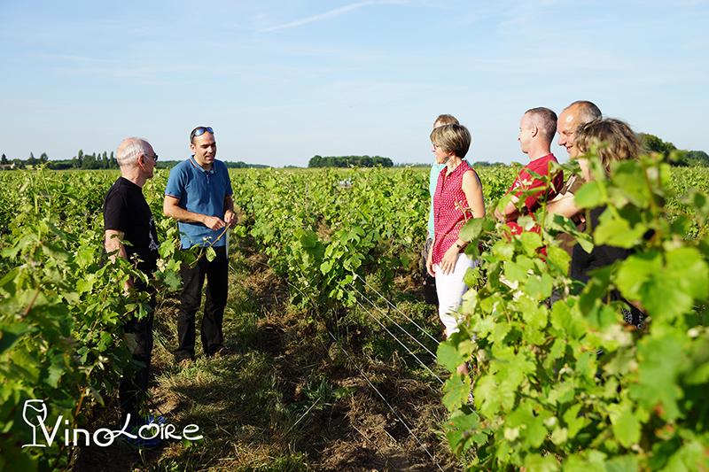 Vinoloire Wine-tours à VOUVRAY © Vincent Delaby