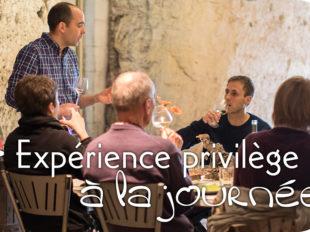 Vinoloire Wine-tours à VOUVRAY - 10  © Vincent Delaby