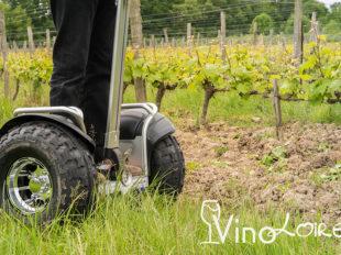 Vinoloire Wine-tours à VOUVRAY - 14  © Vincent Delaby