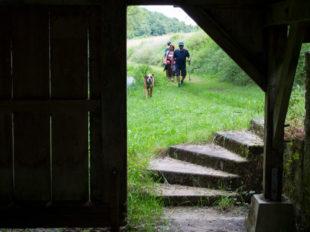 Balade à pied n°58 – Balade en bord de Creuse à SAINT-GAULTIER - 4  ©  hellio - van ingen
