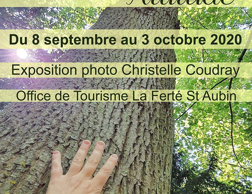 Exposition Photo par Christelle Coudray à LA FERTE-SAINT-AUBIN © Christelle Coudray