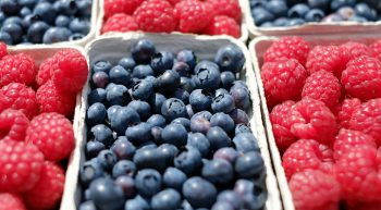 berries-1493905-1280-2