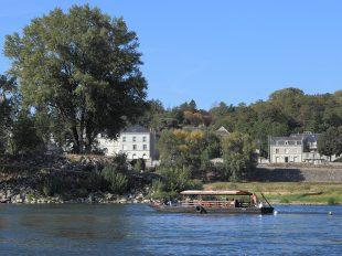 Balade en bateau sur la Loire – Boutavant à TOURS - 3  ©  Sébastien Andréi