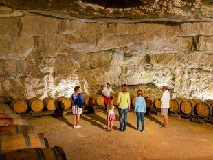 Cave de la Dive Bouteille à BOURGUEIL - 5  © ADT Touraine / Jean-Christophe Coutand