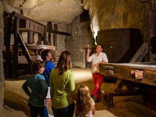 Cave de la Dive Bouteille à BOURGUEIL - 6  © ADT Touraine / Jean-Christophe Coutand