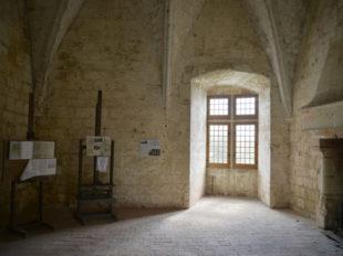 Château de Cinq-Mars et Parc à CINQ-MARS-LA-PILE - 3  ©  Château de Cinq Mars