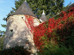 Château de Cinq-Mars et Parc à CINQ-MARS-LA-PILE - 9  ©  Château de Cinq Mars