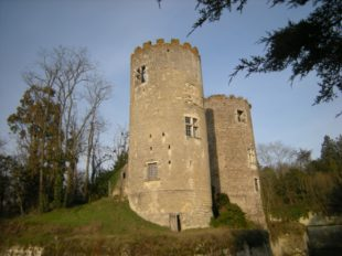 Château de Cinq-Mars et Parc à CINQ-MARS-LA-PILE - 10  ©  Château de Cinq Mars