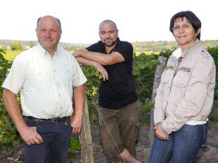 Découverte commentée du vignoble en calèche à BENAIS - 3  ©  Dominique Couineau
