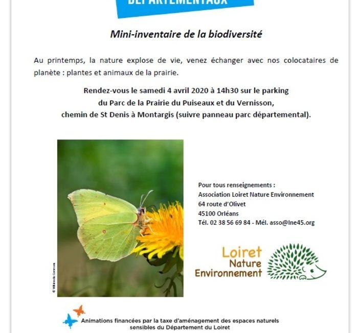 Mini-inventaire de la biodiversité : (animation initialement prévue le 04/04/2020) à Montargis © LNE