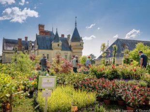 Château de la Bourdaisière à MONTLOUIS-SUR-LOIRE - 2  © ADT Touraine / Jean-Christophe Coutand