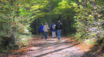 hiking-1232453_1280