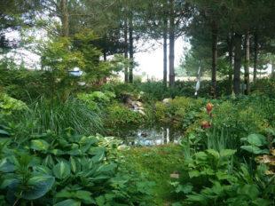 Le Jardin de Mireille en Touraine Angevine à CHANNAY-SUR-LATHAN - 8