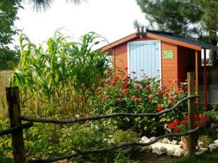Le Jardin de Mireille en Touraine Angevine à CHANNAY-SUR-LATHAN - 6