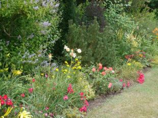 Le Jardin de Mireille en Touraine Angevine à CHANNAY-SUR-LATHAN - 9