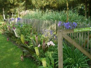 Le Jardin de Mireille en Touraine Angevine à CHANNAY-SUR-LATHAN - 7