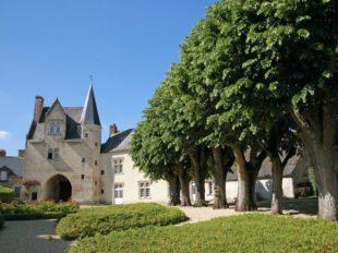 Le Vieux Château à COTEAUX-SUR-LOIRE - 6  ©  BAC - Le vieux Château