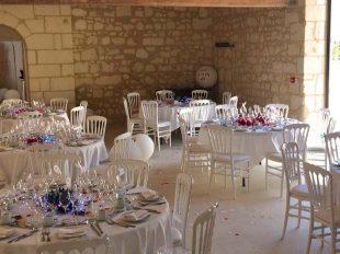 Château de Minière à COTEAUX-SUR-LOIRE - 2  © Droits réservés