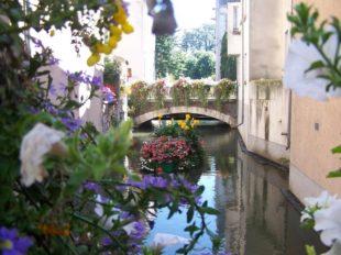 Visite de la ville de Montargis à MONTARGIS - 6  © AME