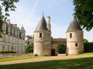 Château de Nitray à ATHEE-SUR-CHER - 2  © Château de Nitray
