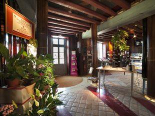 Bureau d'Information Touristique de Nançay à NANCAY - 2  © OFFICEDETOURISMENANCAY