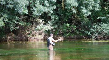 Loire & pêche