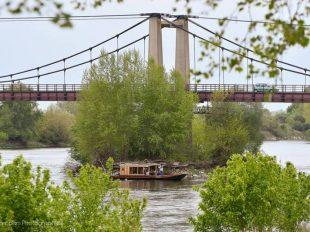 Balade en bateau traditionnel avec l'association Coeur de Loire à MEUNG-SUR-LOIRE - 2  ©  O. Parcollet