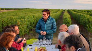 Vignoble Alain Robert – Rendez-vous dans les Vignes